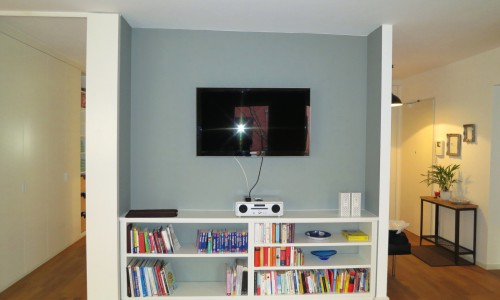 TV Section
